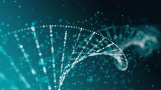 Γενετική